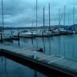 Pelican Harbour, Sausalito