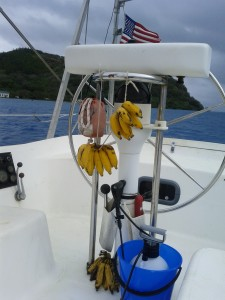 Bananas on the boat