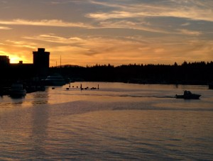 Sunset looking over Coal Harbour