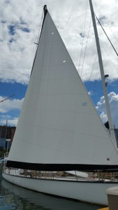 Drying out the sail, ready to pack it up